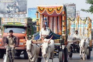 La India: Rajastán en coche con conductor