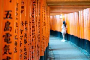 Viaje a Japón organizado: emociones infinitas