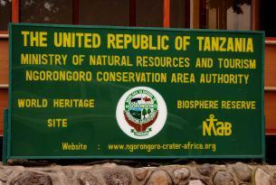 Safari enigmas de Tanzania