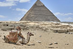 El adorable Egipto en grupo con días de playa en el mar Rojo