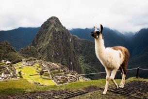 Titicaca y Machu Picchu, Perú