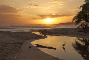 Volcanes y Playas de Costa Rica en coche