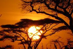 Kalahari, la última frontera
