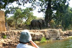 Zambia & Zimbabwe Flying Safari