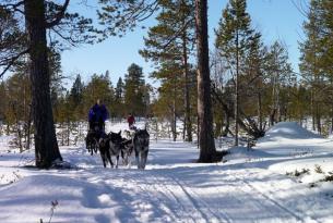 Aventura polar: norte de Suecia, norte de Finlandia, norte de Noruega, Oslo y crucero rompehielos