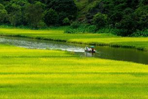 Pasión de Vietnam