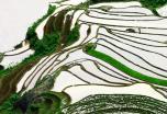 Vietnam inolvidable con Sapa