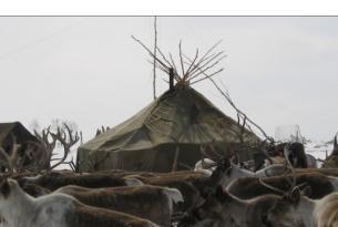 Expedición antropológica a la tierra de los Evens en Kamchatka (Siberia)