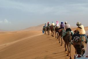 Reinos Nómadas (Marrakech, noche en el desierto y kasbahs)
