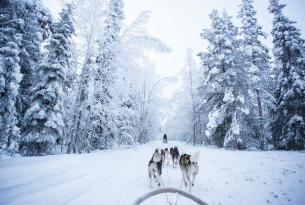 Aventura en Laponia: Auroras Boreales y Papa Noel