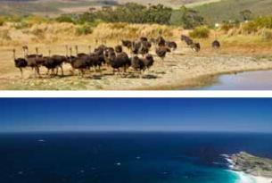 Sudáfrica: el mundo entero en una única nación