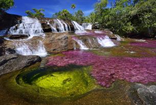 Colombia con Caño Cristales: el río más bonito del mundo