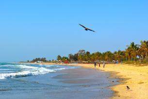 Gambia: ríos y manglares