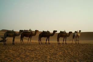 Marruecos: Semana Santa en Marrakech con desierto (5 días)