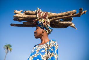 Gambia: minicircuito  & Playa 9 dias