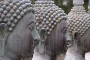 Sri Lanka -  La isla de las especias - Salidas individuales