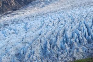 Alaska -  El Gran Norte - Guía naturalista habla castellana. Salidas julio y agosto