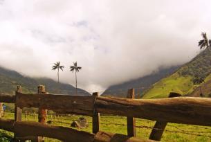 Viaje por el encantador paisaje Andino de colombia