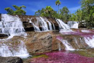 Caño cristales: el rió más hermoso de Colombia