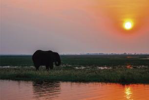 Namíbia, Botswana y Zimbabwe: África espectacular