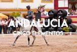 Descubre Andalucía y sus cinco elementos: Cultura, Tradiciones, Gastronomía y mucho más
