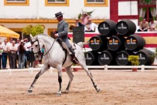 Cinco Elementos Andalucía