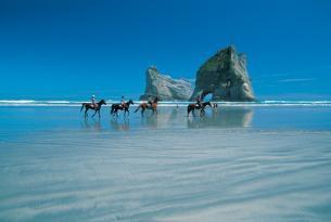 Contrastes de Nueva Zelanda en grupo