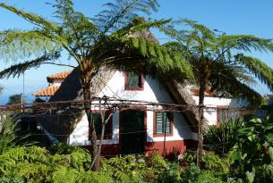 Naturaleza y tradiciones de la Isla de Madeira en grupo