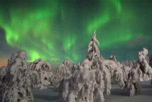 Laponia. Travesía con raquetas en el Parque Nacional de Oulanka