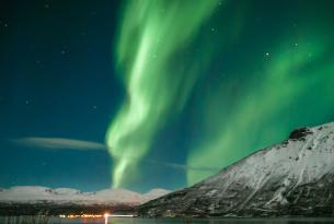 Auroras boreales y ballenas en Lofoten (Noruega) en el Puente de noviembre