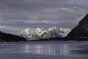 Puente de Diciembre: auroras boreales y trineo de perros en Lofoten (Noruega)