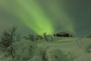 Puente de Diciembre: trineo de perros, motonieve y raquetas en Laponia 8 días