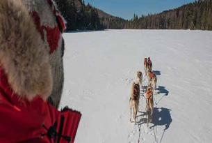 Canadá: raquetas, huskies, esquí y las Cataratas del Niágara