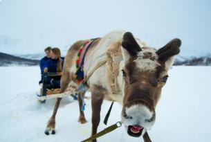 Noruega: La Magia de las Auroras Boreales en Tromso
