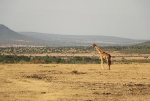 La magia de los lagos y parques del norte de Tanzania