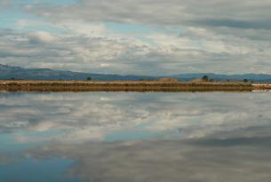 Tarragona: Delta del Ebro y Costa Dorada en Puente de Mayo