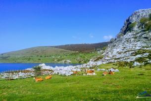 Senderismo en Asturias: Picos de Europa, Llanes, Colunga, Cares, Covadonda, Cangas de Onís