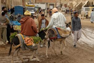 Ruta Marruecos Misterioso 2015