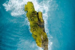 Costa Rica: bosque lluvioso caribeño en 9 días