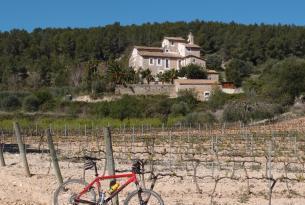 Descubriendo el Penedés, tierra de vinos, cavas y playas
