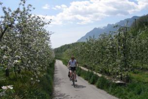Sur del Tirol:  bicicleta y relax en Bolzano