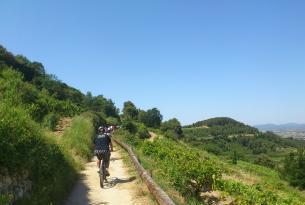 Cataluña en bicicleta: Vía Penedés