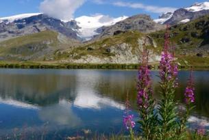 Miradores del Monte Rosa en los Alpes Suizos y Aosta (Italia)