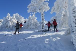 Raquetas de nieve en Benasque - salida de Reyes