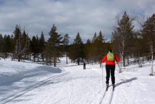 Laponia Finlandesa (Ruka): Raquetas y Esquí de Fondo