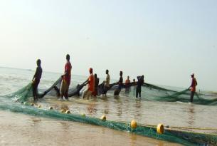 Gambia y Senegal: turismo responsable