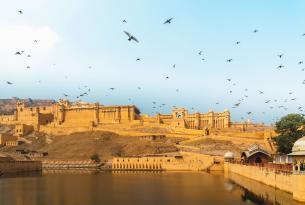 Tour por los fuertes y palacios de Rajastán