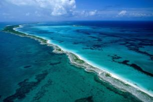 Viaje Buceo Safari Bahamas