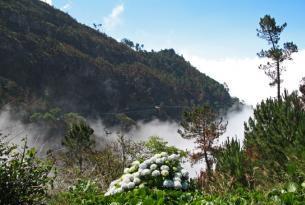 Maravillas de Madeira