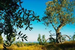 Italia: La Toscana y sus villas medievales (especial Semana Santa)